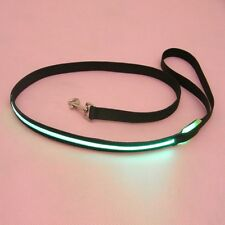 Pet Dog Lead Light Glow Leash Rope Belt LED Flashing Light Nylon Safety Harness