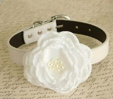 White Floral dog collar, Flower collar, Pet wedding accessory, Choker, pearl