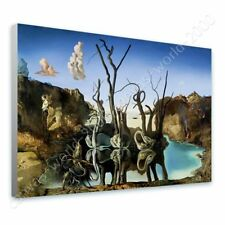 READY TO HANG CANVAS Swans Reflecting Elephants Salvador Dali Framed Paintings