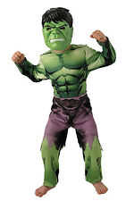 Boys - The Hulk Fancy Dress Costume Outfit