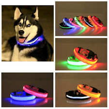Nylon Cat Pet Dog Collar LED Light Night Safety Light-up Flash Glowing in Dark