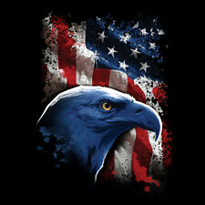 American Flag USA Freedom Eagle United States Patriotic 4th Of July T-Shirt Tee