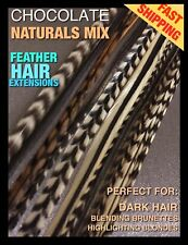 Feather Hair Extensions Real Grizzly Chocolate Naturals 12Pack 2Free XL-XXL Lgth