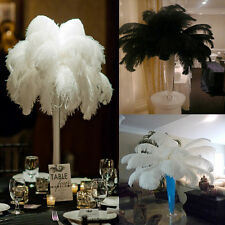 New Wholesale Natural Ostrich Feathers 12-14inch/30-35cm White/Black 10pcs
