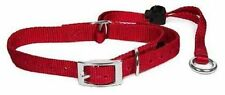 Premier Gentle Leader Head Collar w/ Buckle No Pull, All Sizes, Colors FREE DVD
