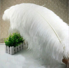 Wholesale, 10-200pcs high quality male ostrich feathers 6-32 inches / 15-80 cm