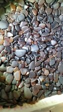 BULK FORT BRAGG Ca. GLASS BEACH sea glass, Real genuine authentic. Browns 1lb 💦