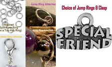 Special Friend Charm Sterling Silver Plated Dangle Charm Bracelet wth Jump Ring