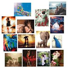 DIY Digital Painting By Number Kit Oil Canvas Paint Home Wall Art Decoration