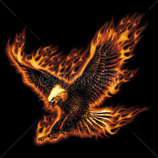 Eagle Flying On Fire Flames Blazing Cool T-Shirt Tee
