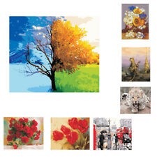 Large Canvas Picture 30x40cm Paint by Numbers Kits Brush Hook Paints Include
