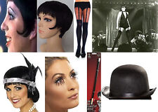 DELUXE LIZA MINNELLI CABARET FLAPPER 1920'S 1930'S FANCY DRESS COSTUME KITS