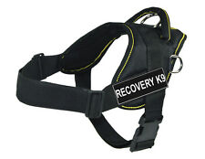 Working Dog Harness Yellow Trim with Recovery K9 Velcro Patch Label Tag