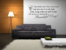 Elbow - One Day Like This Lyrics Wall Sticker / Wall Art Home Decor