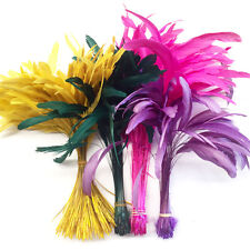 10 STRIPPED COQUE TAIL FEATHERS, Craft, Millinery, Art, Scrapbooking, Rooster