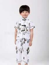 Chinese Boy's Tang Style Costumes Kung Fu Suits 2 Pieces Set For Boys Dragon