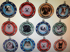 Dog Breed Variation Choice Shelter Rescue SPINNER NEW Key Ring Chain Fab