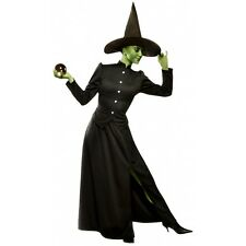Wicked Witch of the West Costume Adult Womens Halloween Fancy Dress