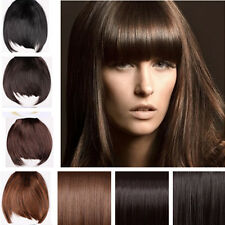 UK charming Clip On Clip In Front Bang Fringe Hair Extension Straight one piece
