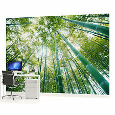 Bamboo Forest Photo Wallpaper Wall Mural (CN-150VE)