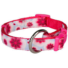 Blueberry Pet Vibrant African Pink Floral Nylon Small Medium Standard Dog Collar