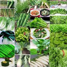 Home DIY Garden Various Vegetable Seeds Non-gmo Hybrid organic Survival Plant