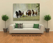 Wall Art Canvas Picture Print - Running Horses
