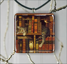CAT NAP IN BOOKCASE PENDANTS NECKLACE OR EARRINGS -bt6r