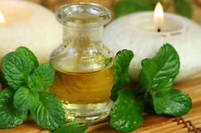 Ambrosial Peppermint Essential Oil 100% Pure Organic Natural