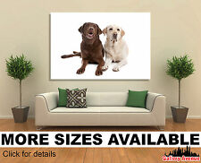 Wall Art Canvas Picture Print - Yellow and Chocolate Labrador Dogs, Dog 3.2