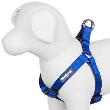 Blueberry Pet Classic Solid No Pull Adjustable Standard Dog Harness - 6 Colors