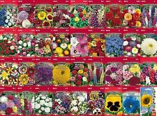 A variety of flower seeds for the best price, also 36 species