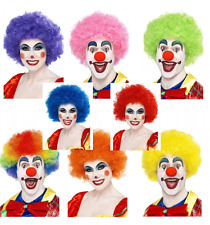 Unisex Clown Fancy Dress Costume WIG Fun Coco Circus Outfit Accessory