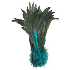 10 VARIEGATED COQUE TAIL FEATHERS, Craft, Millinery, Art, Scrapbooking, Rooster