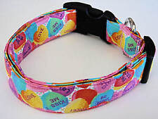 Charming Valentines Day Candy Conversation Hearts Dog Collar