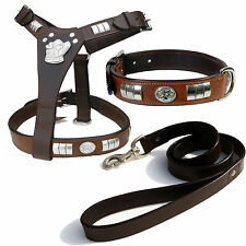 STAFF HARNESS WITH DOG FACE,COLLAR & LEATHER LEAD SET, CHROME FITTED IN 8 COLORS