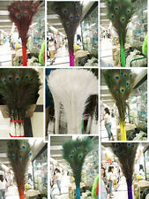 Wholesale 10/20/50/100 PCS 28-32 inches / 70-80cm peacock feathers eye select