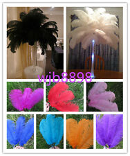 Wholesale! 10/50/100 pcs beautiful 6-26 inches / 15-65 cm ostrich feathers