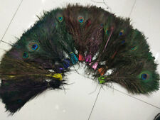 Beautiful multiple colors of peacock feathers 25-30 cm /10-12 inch free shipping