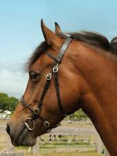 WINDSOR EQUESTRIAN LEATHER IN HAND SHOWING BRIDLE - HORSE PONY EQUESTRIAN