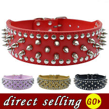 2''Wide Leather Studded Dog Collar Spiked Collar For Pitbulls Large Pet Supplies