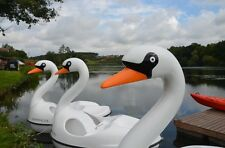 Swan Pedalo Pedal Boat 2/3 Seater