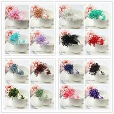 280pc Artificial Flower Stamen Double Tip Pearlized Craft Cards Cakes Gifts