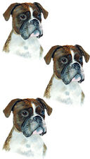 Realistic Art Dog Boxer Large Breed HQ Vinyl Decal - Home Car Truck SUV RV Boat