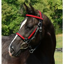 COB  SIZE  HALTER BRIDLE & REINS made from BETA BIOTHANE (ANY 2 COLOR COMBO)