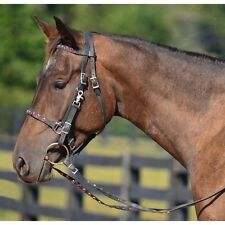 WARMBLOOD/TB  Size  HALTER BRIDLE & REINS made from BETA BIOTHANE (with BLING)