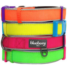 Blueberry Pet New Summer Hope 3M Reflective Neoprene Classic Padded Dog Collar