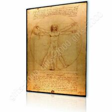 CANVAS (Rolled) The Vitruvian Man Leonardo Da Vinci Oil Paints Painting