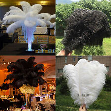 10-100PCS OSTRICH FEATHERS 12-14inches/30-35cm wedding (white black)