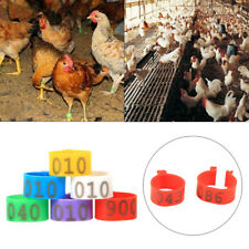 100pc 16mm 20mm Clip On Leg Band Rings Chickens Ducks Hens Poultry Pigeon